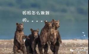 """5岁""""熊孩子""""开敞篷跑车上马路,看视频才知道太危险了!"""